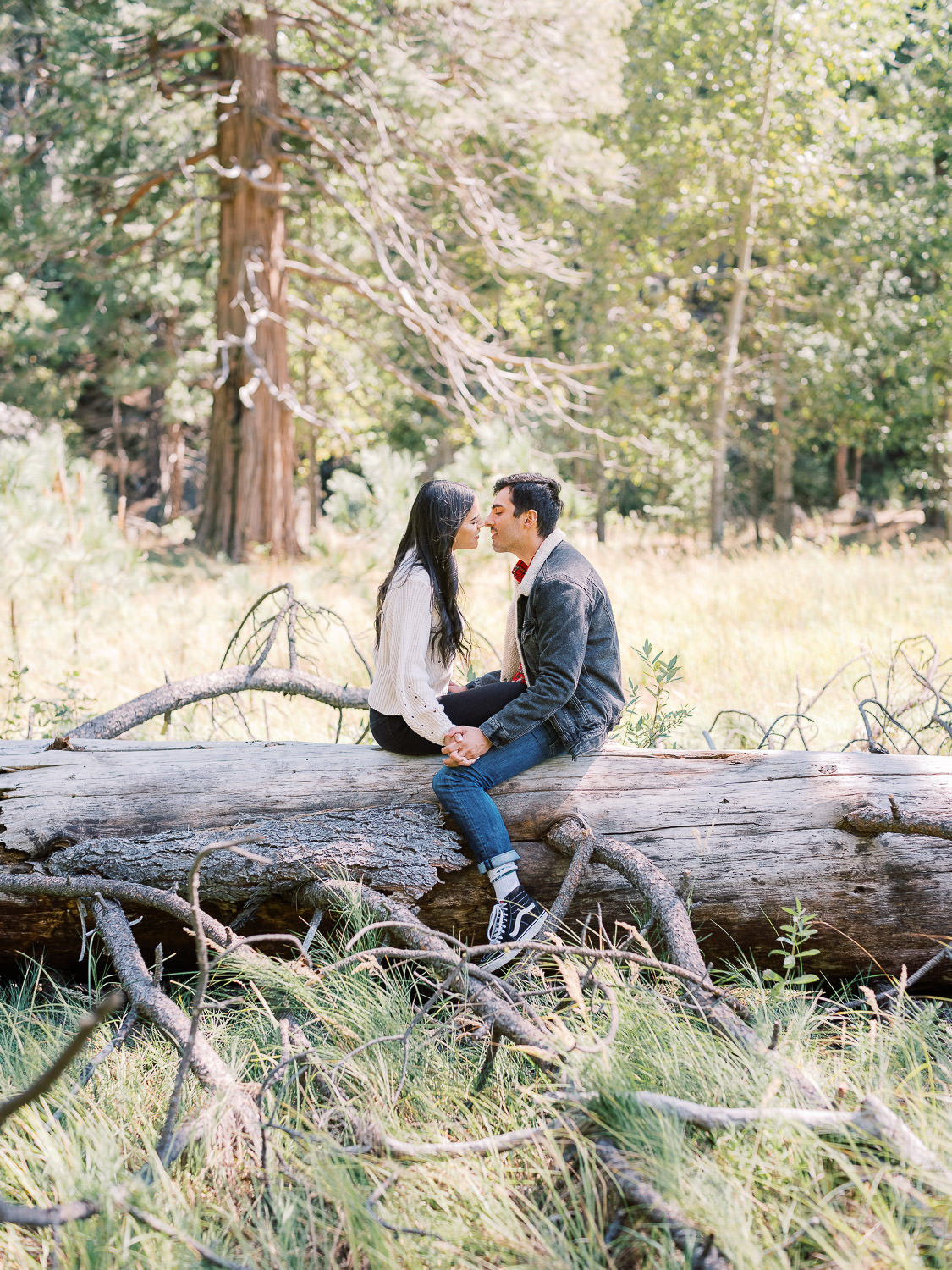 Yosemite-Valley-Engagement